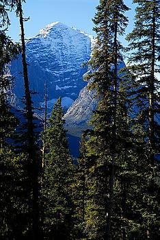 Larry Ricker - A Peek at the Peak