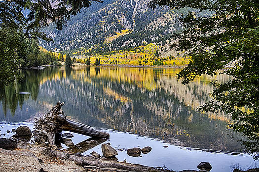 A Peek Into Cottonwood Lake by James BO  Insogna