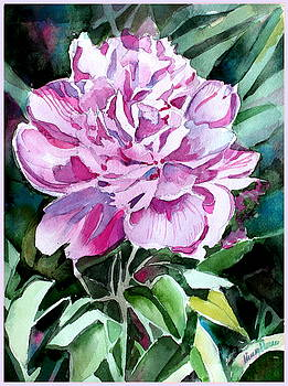 A Pink Peony by Mindy Newman