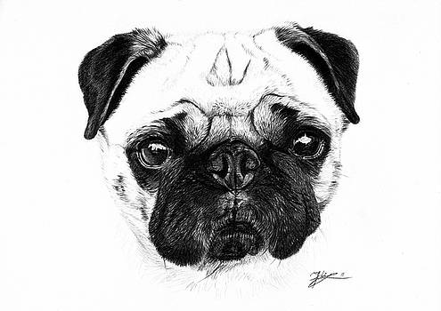 A pug by Jeanne Delage