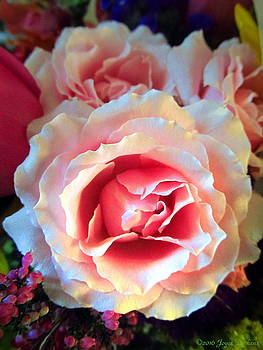 Joyce Dickens - A Romantic Pink Rose