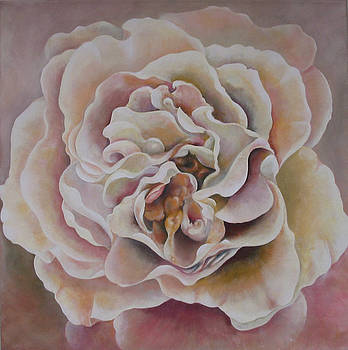 A Rose by Eve Corin