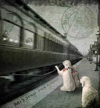 A Sad Goodbye by Suni Roveto