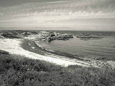 Joyce Dickens - A Scenic Little Cove On The Pacific Black And White