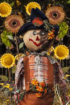 Jack Zulli - A Seasonal Guy