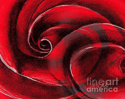 A Shape in Rose by Allison Ashton