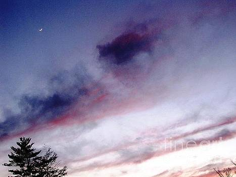 A Sliver of Moon by Melissa Stoudt