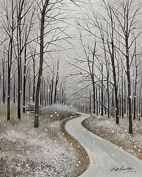 A Snowy Path by Bill Dunkley