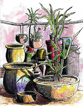 A Still Life by Terry Banderas