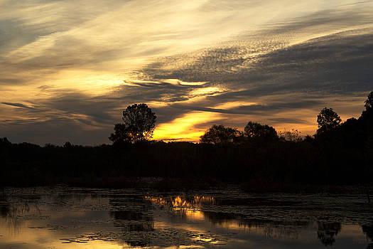 A Stirring in the Skies by Amanda Kiplinger