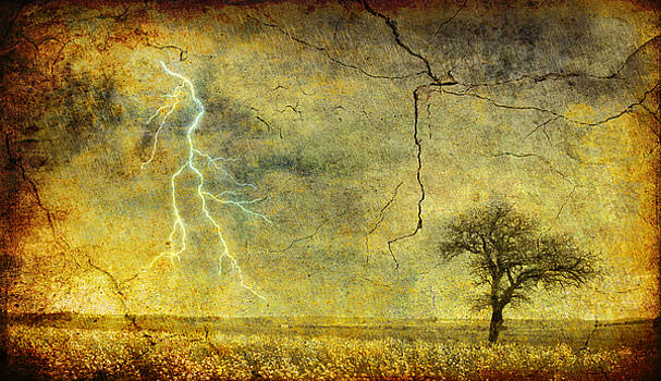 Silvia Ganora - A stormy Spring