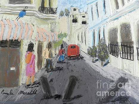 A Street in Chile by Pamela Meredith