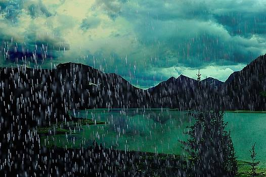 A Sudden Downpour by Shirley Sirois