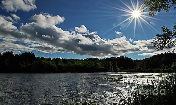 A Sunny Day by Irfan Gillani