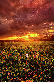A Thousand Years From Yesterday by Phil Koch