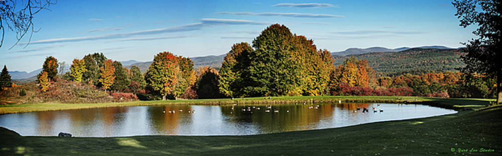 A Vermont Pond in October by Yuri Lev