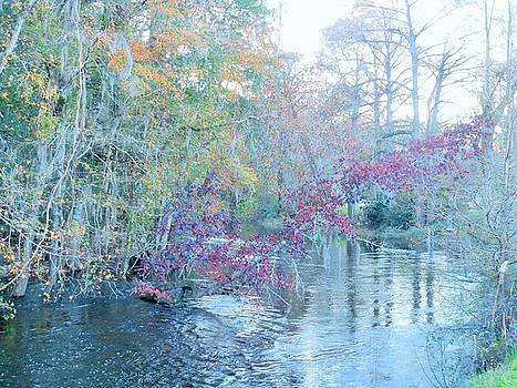 A View of Autumn by Kay Gilley