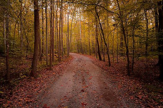 A Walk In The Fall by Dan Girard