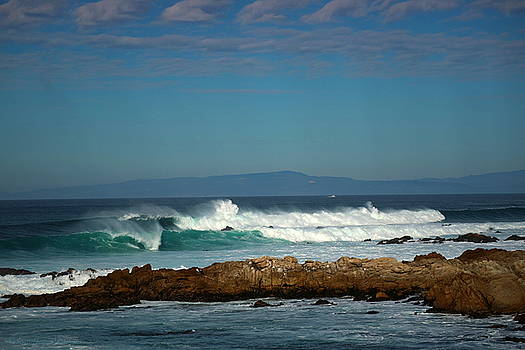 A Winter Day On The Coast Of Pacific Grove CA by Joyce Dickens