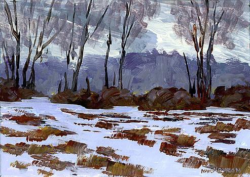 A Winter Mood by Mary Byrom