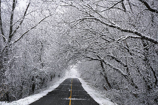 A Winter's Travel by Kathi Mirto