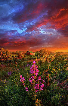 A Wisconsin Story by Phil Koch