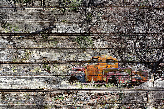 Abandoned Antique Truck by Phyllis Denton
