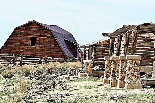 Abandoned barn by Carole Martinez
