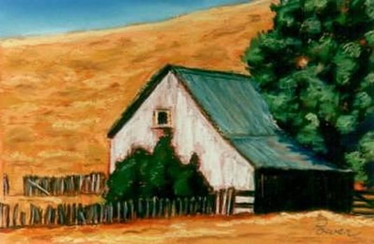 Abandoned Barn by Joyce Power