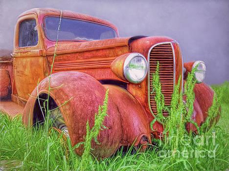 Abandoned Chrysler Truck by Marion Johnson