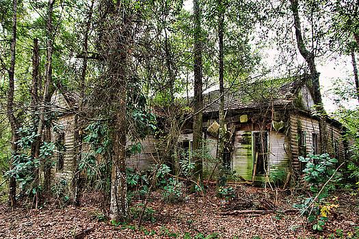 Abandoned House in Alabama by Lynn Jordan
