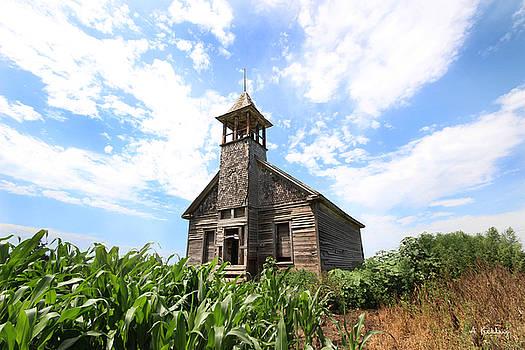 Abandoned School - Stromsburg, Nebraska by Andrea Kelley