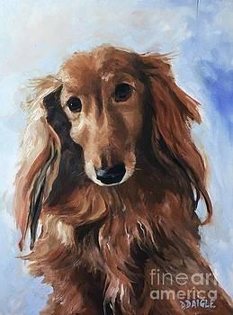 Abby by Diane Daigle