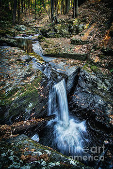 Above Deer Leap Falls, 2016.11.13 by Aaron Campbell