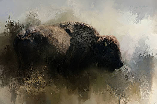 Jai Johnson - Abstract American Bison