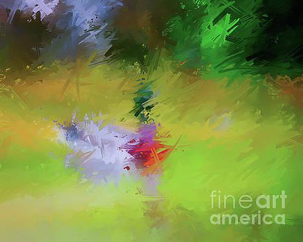 Abstract Art - Mallard Duck  by Kerri Farley