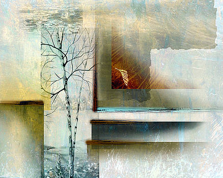 Abstract Birch by Ken Shotwell