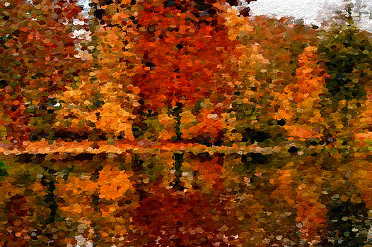 Abstract Colors of Autumn  by Anthony Fishburne