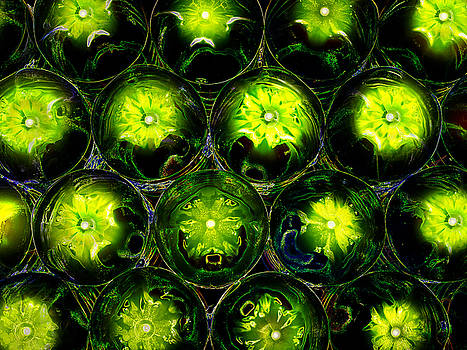 Abstract digital art Bubbles Flowers by Adriano Pecchio