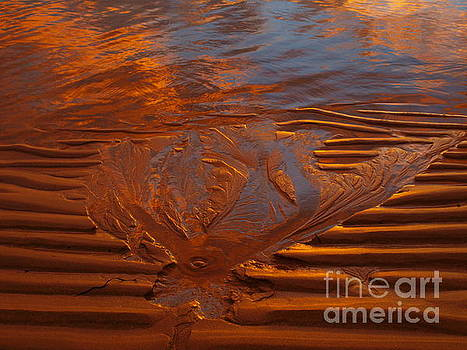Abstract In Sand by Trena Mara