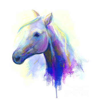 Abstract multi-coloured head horse  by Alena Lazareva