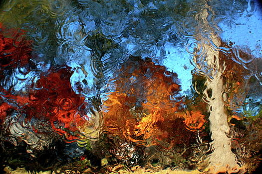 Abstract of Autumn II by Charles Shedd