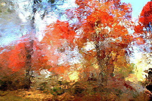 Abstract of Autumn V by Charles Shedd
