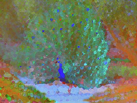 Abstract Peacock by Natalya Shvetsky