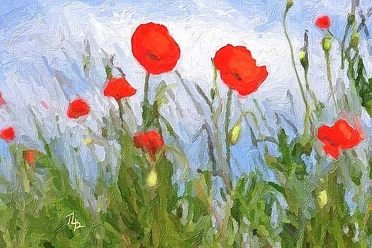 Abstract Poppies by Tammy Lee Bradley