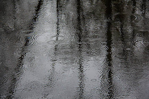 Abstract Rain Patterns by Melodie Douglas