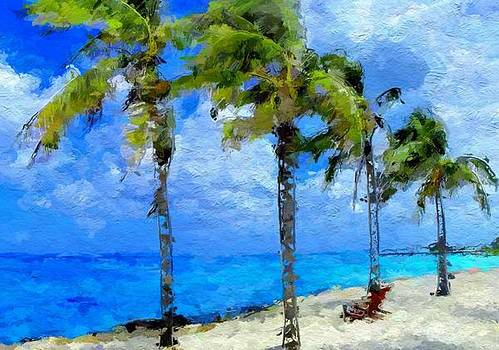 Abstract tropical Palm beach by Anthony Fishburne