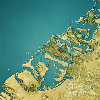 Abu Dhabi Topographic Map Natural Color Top View by Frank Ramspott