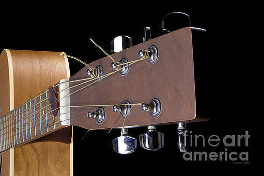 Acoustic Guitar Detail by Gordon Wood