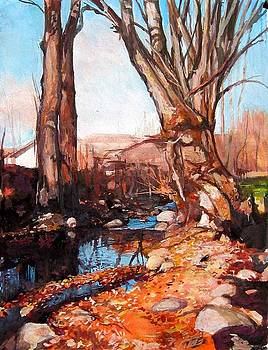 across Bulgaria 15 by Stoian Pavlov